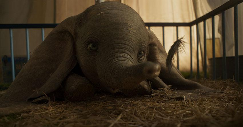 Dumbo mang đến cho khán giả những giây phút giải trí vui vẻ