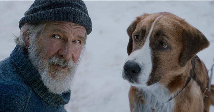 Review Phim Tiếng gọi nơi hoang dã – Sống theo tiếng gọi của trái tim