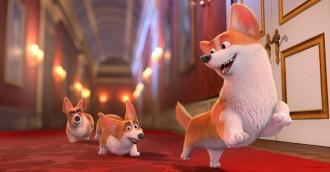 [Review] Corgi: Những chú chó hoàng gia – Vui vẻ và hài hước